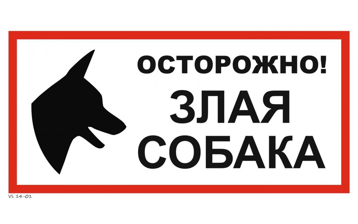 картинки с осторожна собака не стерильна идеально