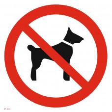 P 14  Запрещается вход (проход) с животными